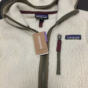 Patagonia Jackets & Coats - ❌SOLD❌PATAGONIA RETRO PILE HOODED JACKET 🆕